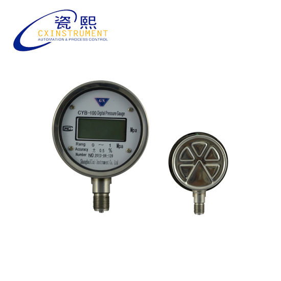 China Cx-DPG-Rg-51 Digital Steam Boiler Pressure Gauge (CX-DPG-RG-51 ...