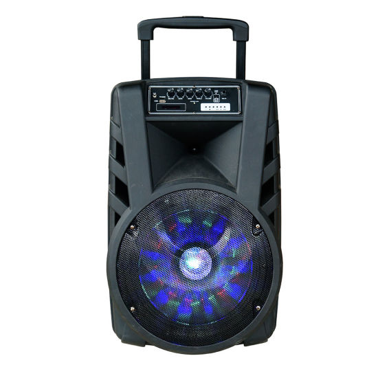 Temeisheng 12 Inch Woofer Outdoor Powerful Disco Light Bluetooth Trolley Speaker