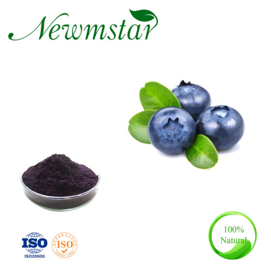 Factory Direct Supply 100% Pure Natural Blueberry Extract Powder Anthocyanin 25% pictures & photos
