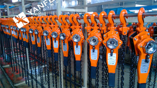 Manual Lifting Hoist Chain Hoist pictures & photos