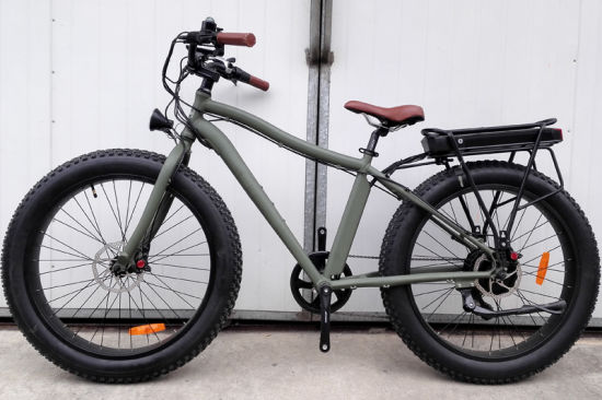 26 Inch Fat Tire Mountain Electric Bicycle with Rear Rack pictures & photos