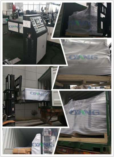 Automatic Tridimensional Non-Woven Bag Making Machine pictures & photos