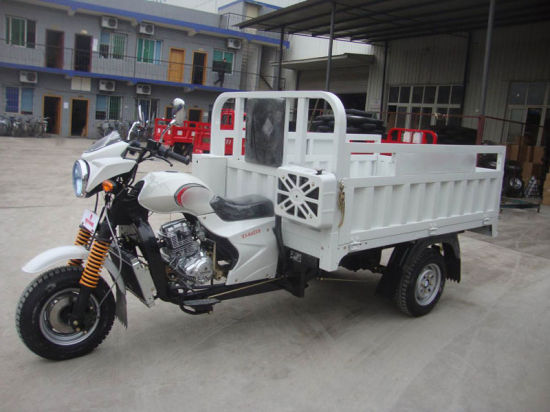 Cargo Passenger Electric 3 Wheel Motorcycle Tricycle pictures & photos