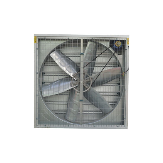 China 3 Phase Exhaust Fan Roof Mounted