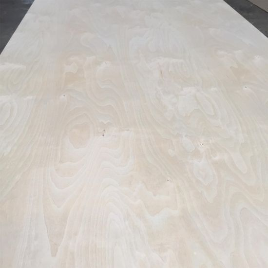 1220*2440mm White Birch Plywood for Furniture pictures & photos