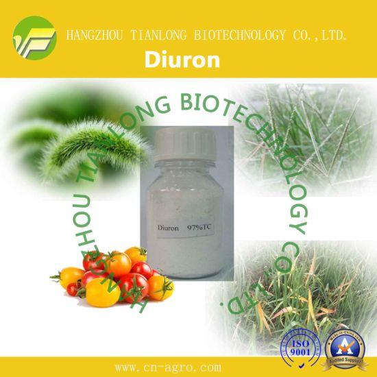 Diuron (97%TC,80%WDG, 80%WP, 500SC, 800SC)-Herbicide