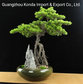 Wholesale Table Home Decoration Indoor Artificial Bonsai Tree