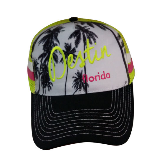 Cheap Trucker Cap with Print Logo Bb1717 pictures & photos