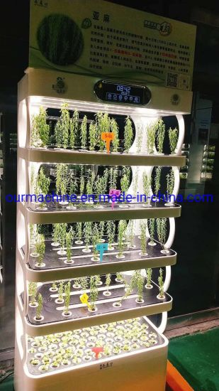 2020 Smart Home Indoor Mini Farming Hydroponics System for Vegetables