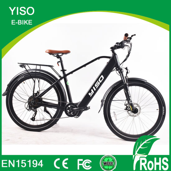 29inch Mountain Electric Push Bike/ 500W E Bike/Dirt Bike