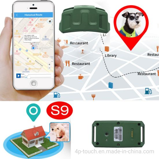 Mini Real Time Google Map Tracking 2G GSM Waterproof Dog Collar Pets GPS Tracker for Dog S9