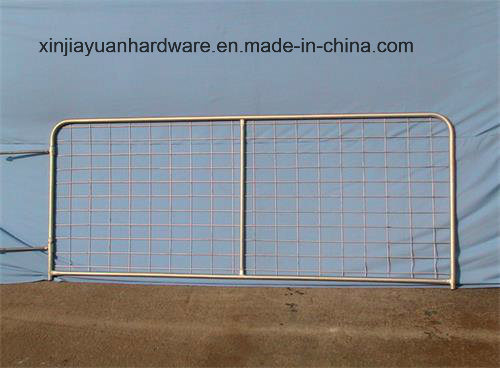 Double II Stay Welded Fence Netting pictures & photos