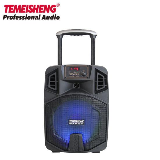 Portable DJ Karaoke Sound Box Trolley Bluetooth PA Speaker
