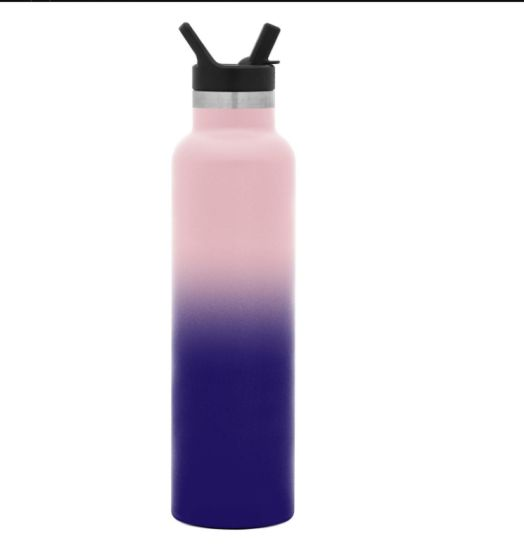 Water Bottles with Straw Lid Vacuum Insulated Tumbler Double Wall Travel Mug 18/8 Stainless Steel Flask