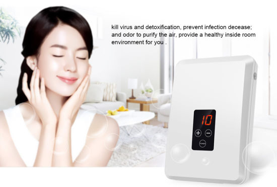 400mg/H Ozone Water Purifier with Timing Control for Household pictures & photos