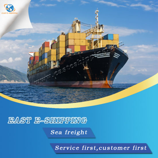 Lowest Sea Freight Rate From China to South America pictures & photos