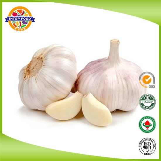 Fresh Pure White Garlic /Normal White Garlic/White Garlic with SGS Certificate