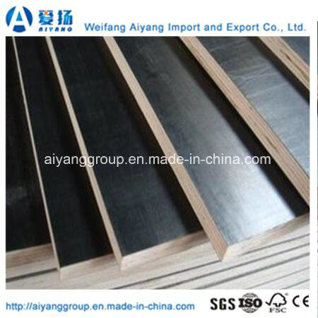 Film Faced Plywood/Concrete Plywood for Construction with Ce Certificate pictures & photos