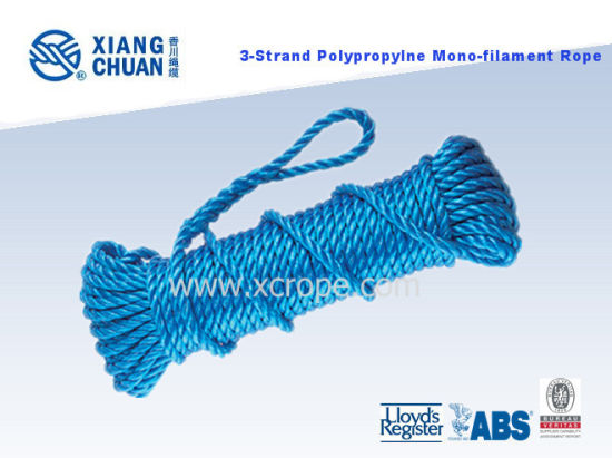 Polypropylene 3 Strand Rope pictures & photos