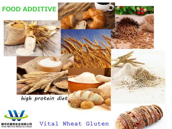 High Quality Hot Sale Powder Organic Free Vital Wheat Gluten