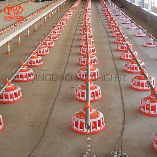 Poultry Farming Breeder Chain Feeding System Cheap and Strong
