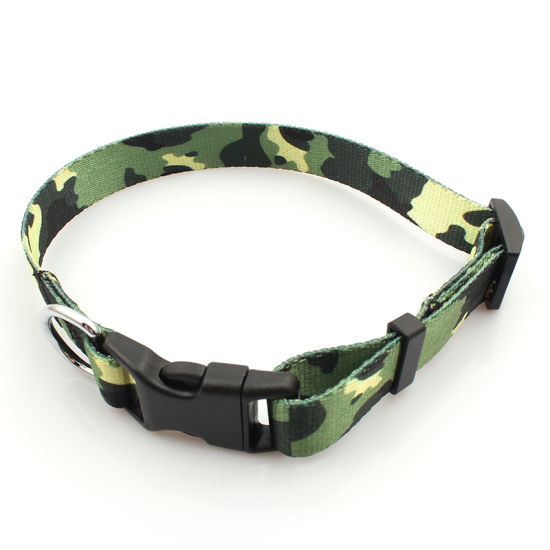 Custom RPET/Polyester Material Webbing Pet Dog Collar with Logo Custom