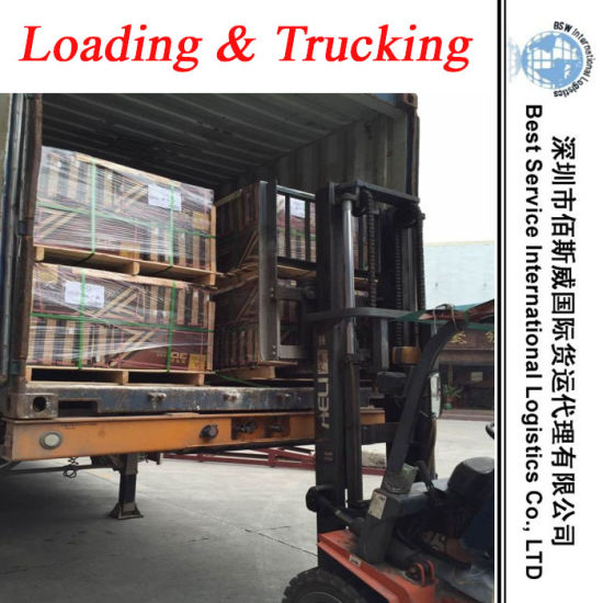 Logistics Loading & Trucking Service in Shunde, Dongguan, Zhongshan, Shenzhen, Foshan pictures & photos