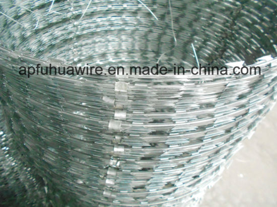 PVC Coated Flat Razor Wire, Concertina Razor Barbed Wire pictures & photos