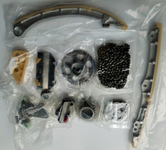 China OEM Replacement Timing Chain Tensioner and Kits for