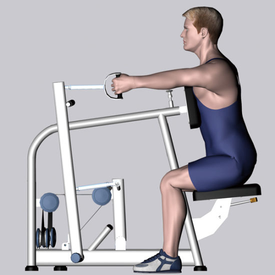 Fitness Equipment for Seated Row /Rear Delt (M7-1009) pictures & photos