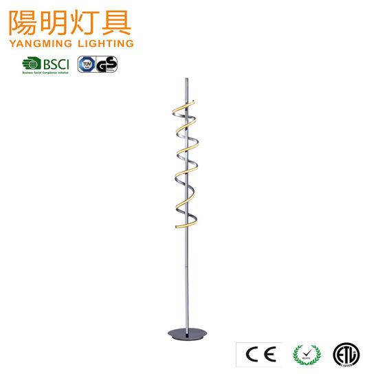 2020 Special New Design S Shape LED Strip Stand Floor Light
