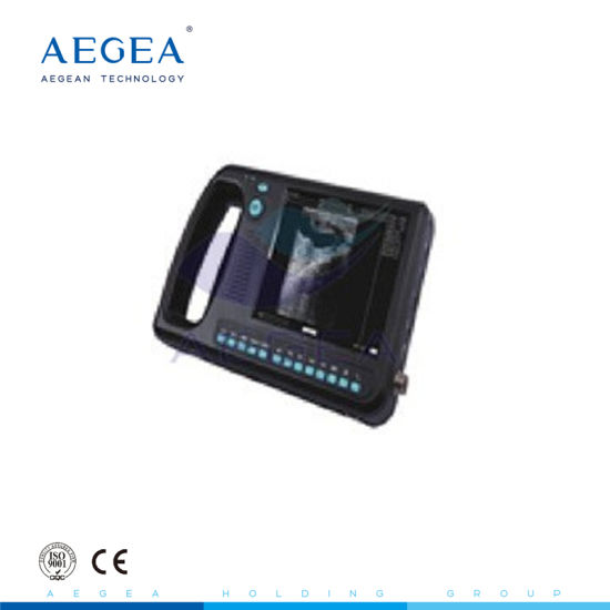 Wide Used 256 Levels Black Portable Ultrasound Scanner China Price