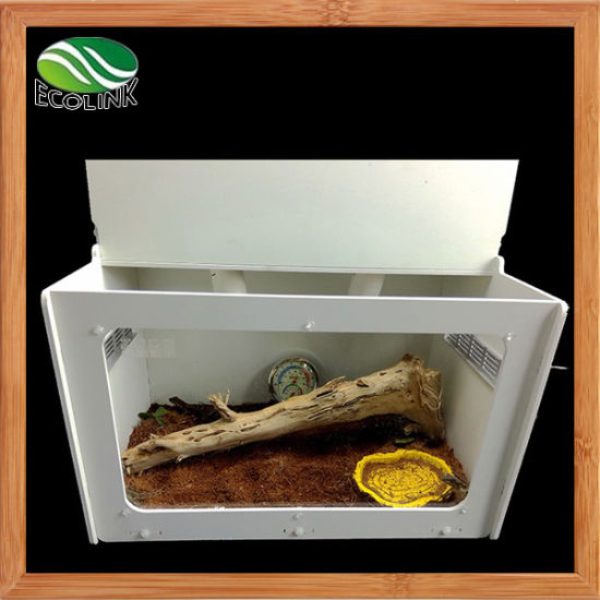 Acrylic Reptiles Terrarium Container for Lizard Chameleon Spider Snake or Other Reptiles & Amphibians Terrarium Only pictures & photos