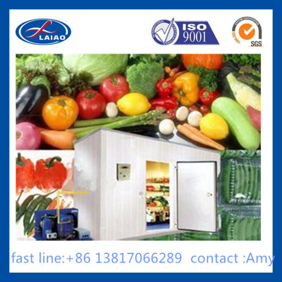 Fruit Cold Storage 120t