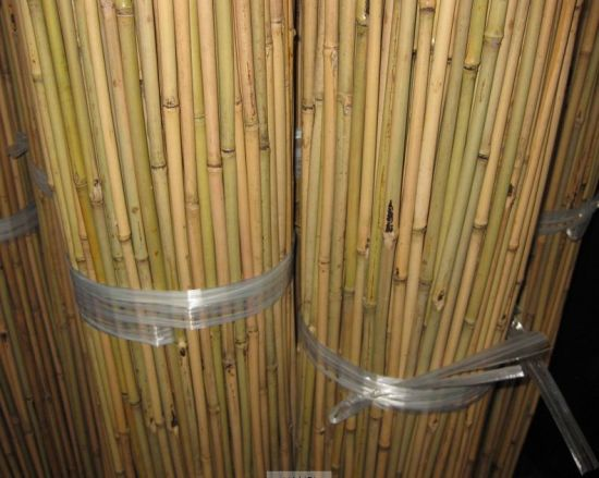What To Do With Thin Bamboo Sticks Home Decorating Ideas