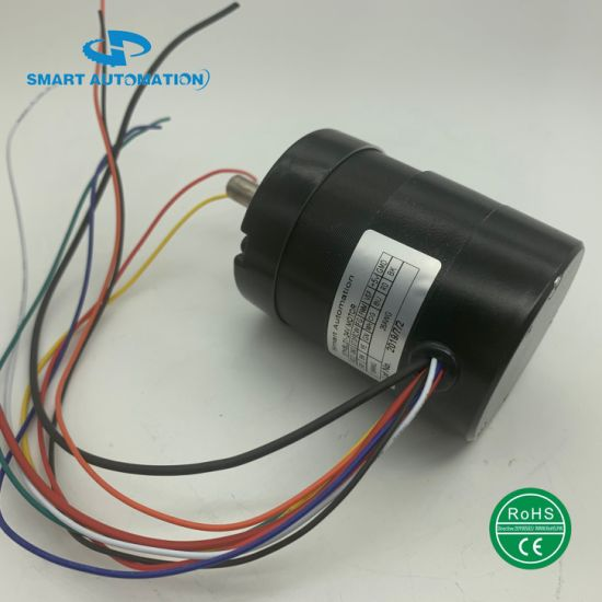 80rbl-Ie Series with Controller/Driver Integrated Electrical Brushless DC Motor