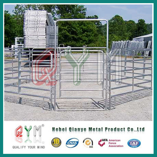 China Painted Wire Filled Tube Gate/ Metal Livestock Field Farm ...