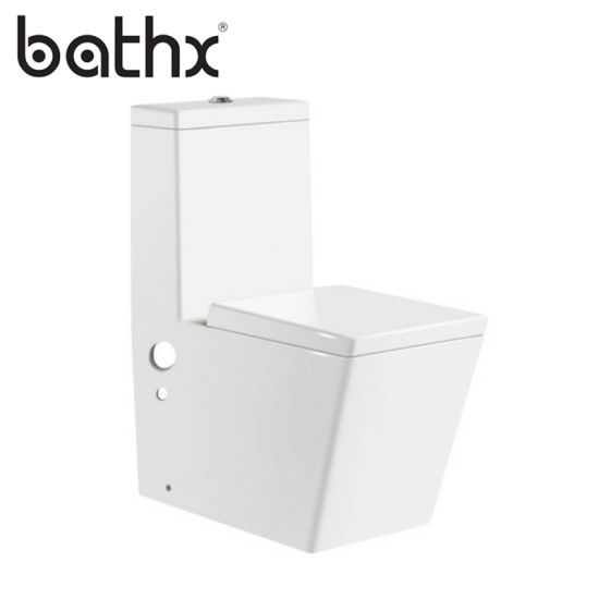 Chaozhou Factory Siphonic Flushing Bathroom Soft Close One Piece Ceramic Square Toilet (PL-3012)