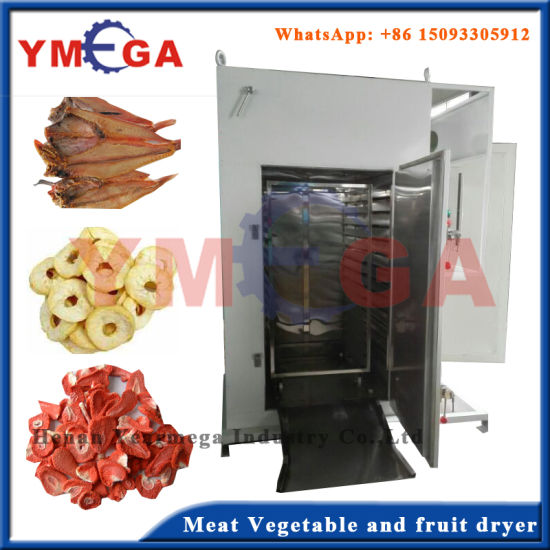 Electric and Gas Instant Drying Stainless Steel Fruit Drying Oven pictures & photos