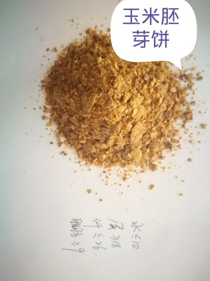 17% Protein 8% Fat Corn Germ Meal Powder for Animal Feed