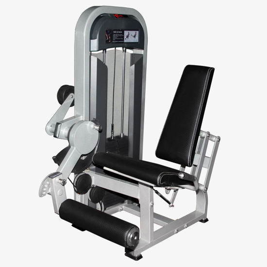 China seated leg extension cheap home gym fitness equipment with