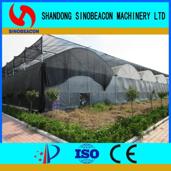 China Double Layer Plastic Film Greenhouse- Hot DIP