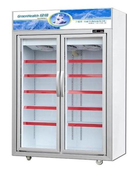 China Double Glass Door Commercial Freezer Display China Freezer