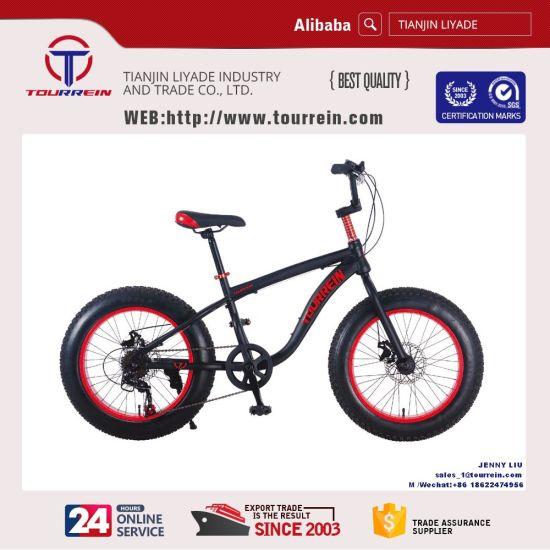 """20"""" Steel Mountain Bike"""