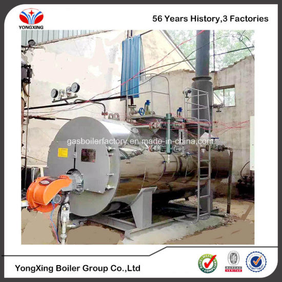 China Large Heating Surface Best Condensing Gas Boiler for Fermentor ...