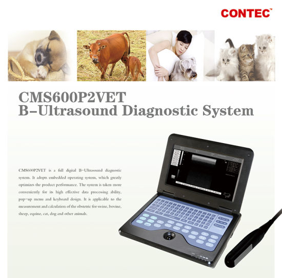 Medical Equipment Portable Veterinary Ultrasound Scanner pictures & photos