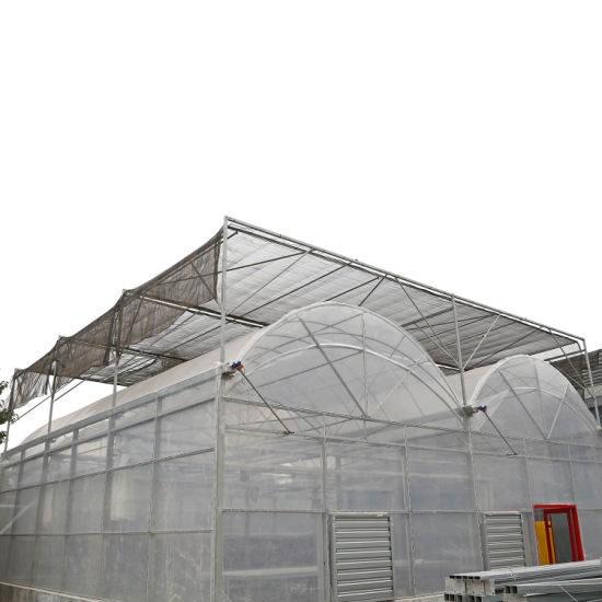 Commercial Shade House Hydroponic Systems Film Greenhouse Sale