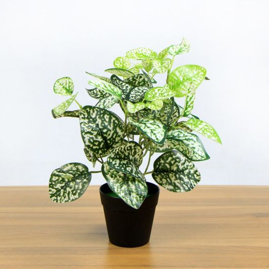 Whole Artificial Office Plants