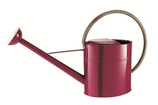Metal Vintage Watering Can 9 Liter pictures & photos