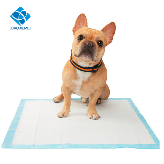 Super Absorbent Puppy Dog Toilet Pee Training Wee Wee Pads China Training Pads And Wee Wee Pads Price Made In China Com